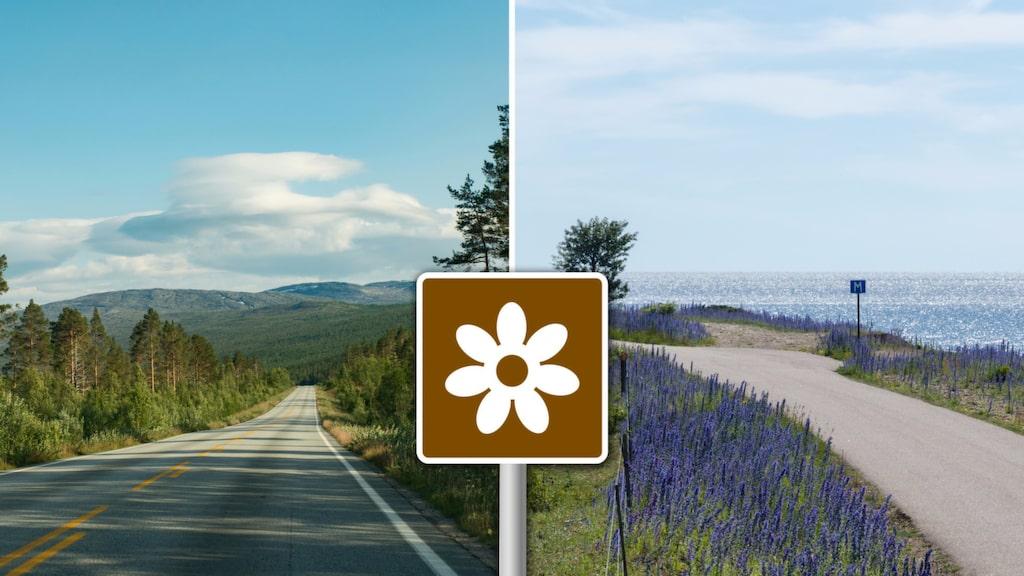 Håll utkik efter den bruna vägskylten om du vill att bilresan ska bli något alldeles speciellt.