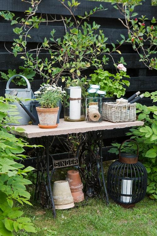 Trädgårdens arbetsbord är gjort av Ölandssten och ett gammalt symaskinsunderrede som Jeanette fått av sin syster. På planket bakom klättrar vildkaprifol. Plymspireorna har en speciell betydelse, de kommer från Jeanettes bortgångna mammas trädgård.Bildtext
