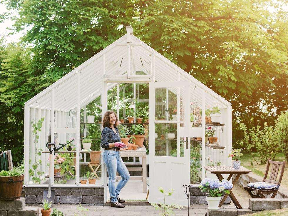 Sugen på växthus i trädgården? Då finns några saker du ska ha koll på först.