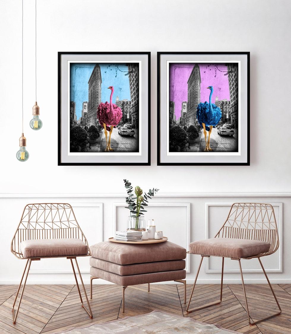"""""""Flatrich pinkish"""" och """"Flatrich blueish"""" - två coola strutsar i olika färgtoner som promenerar förbi berömda Flatiron building i New York."""