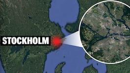 Känd svensk artist åtalas – ska ha slagit ner kvinna
