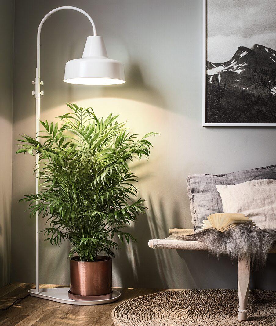 Glöm inte vrår och hörnor. Är det hallar och badrum och hörnor kan du dock behöva komplettera med växtbelysning.