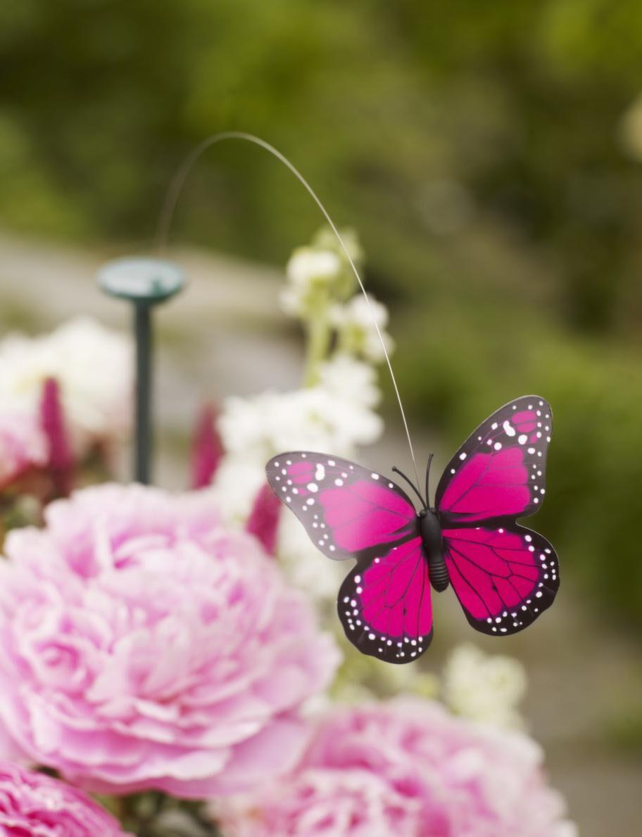 Flygande dekoration.En flygande fjäril snurrar fint över bordet med hjälp av solceller, 95 kronor, Designtorget.