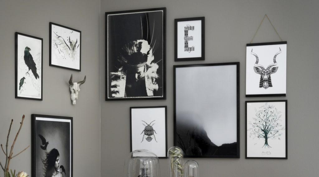 """""""Korpar"""" av Anna Handell, 420 kronor, """"Owl"""", av Toril Baekmark, 350 kronor, """"In between"""" av Lo art design, 650 kronor,  """"Pride"""" av Lo art design, 650 kronor, """"Buggy"""" av Blacklines, 299 kronor, """"Elvis"""" av Blacklines, 99 kronor, """"Fell no III"""" av Owl streets, 929 kronor, """"Kudu"""" av Blacklines, 399 kronor, """"Human tree"""" av Toril Baekmark, 350 kronor. Klicka på plussen i bild för att handla."""