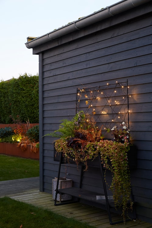 Mot den mörka förrådsväggen har Anna placerat ett planteringsbord fyllt av frodiga ormbunkar och vintergrön murgröna. Ett nät med led-belysning skänker en stämningsfull känsla till arrangemanget.