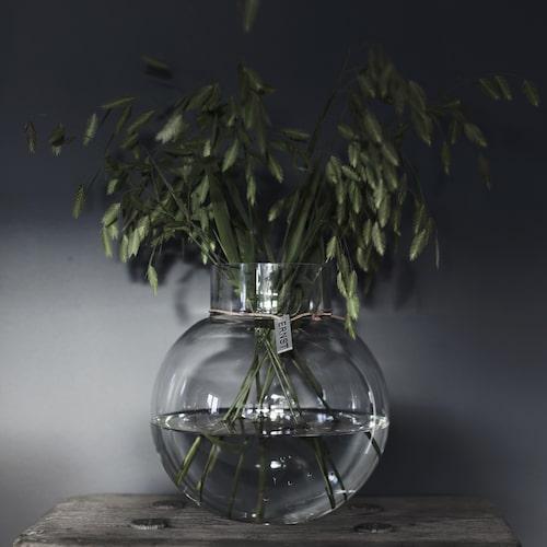 Ernst Kirchsteigers nya vårkollektion för hemmet. Rund glasvas, finns i 4 storlekar, den på bilden 259 kronor.