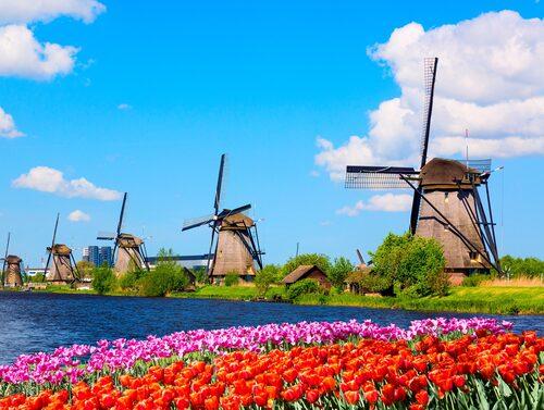Väderkvarnar är något av en symbol för Nederländerna.