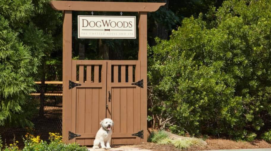 Här stannar nog hunden gärna ett extra dygn. På Umstead Hotel & Spa finns en inhägnad lekplats.