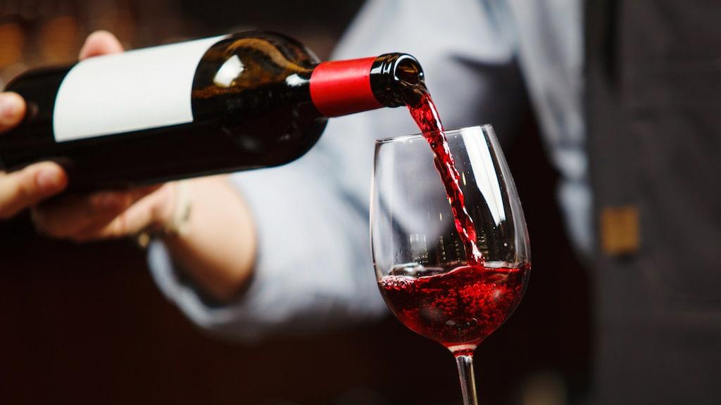 Experten om viner som håller stilen år efter år.
