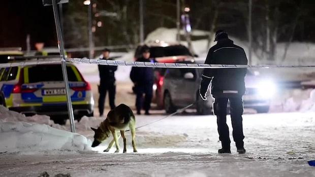 Man skjuten till döds norr om Stockholm