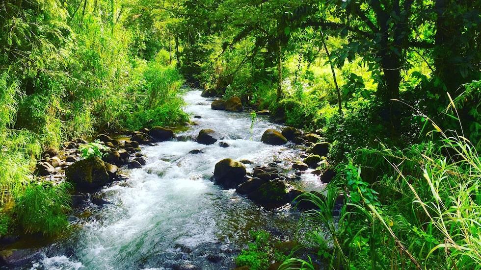 Runt vulkanen Arenal finns vattenfall, forsar, varma källor och massor av äventyr.