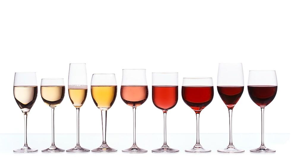 Hur viktigt är det att skilja på vitvins- och rödvinsglas? Vår expert reder ut begreppen.