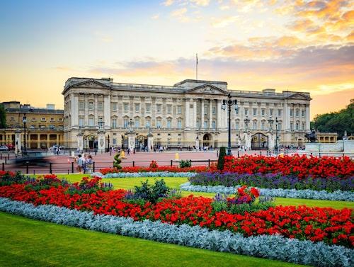 Buckingham Palace är platsen för många statsbesök.