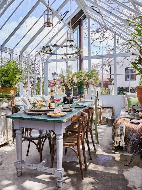 Orangeriet är inspirerat av de gamla viktorianska orangerierna med uppmurad sockel och gjutjärnsfönster. Bordet och stolar är antika. Pläd, urna och kuddar finns att köpa i butiken.