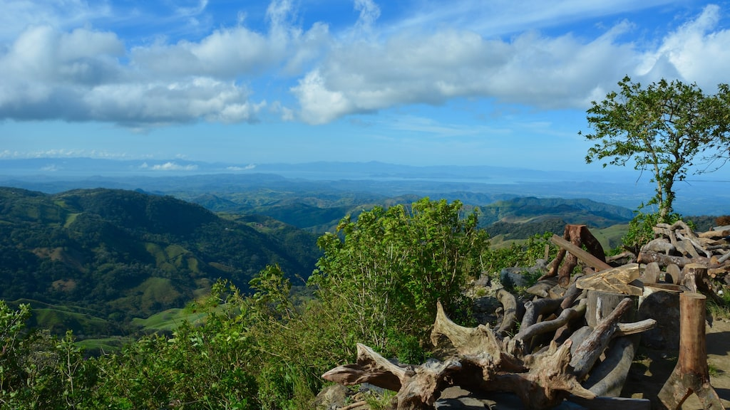 Vägen från Monteverde till Stilla havet är en vacker biltur med böljande kullar.