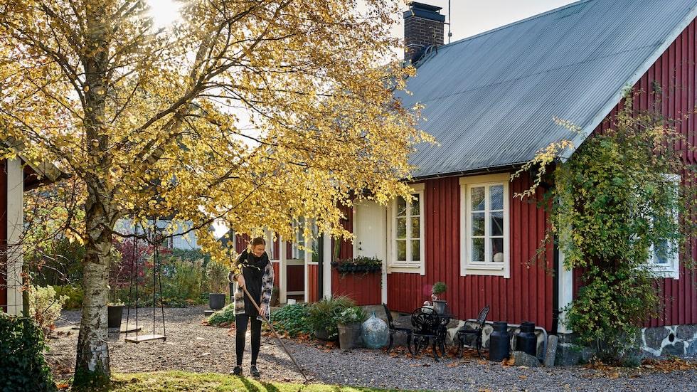 Anna grejar gärna ute i trädgården. Nästa sommar väntar flera trädgårdsprojekt. Dessutom ska hela huset målas om.