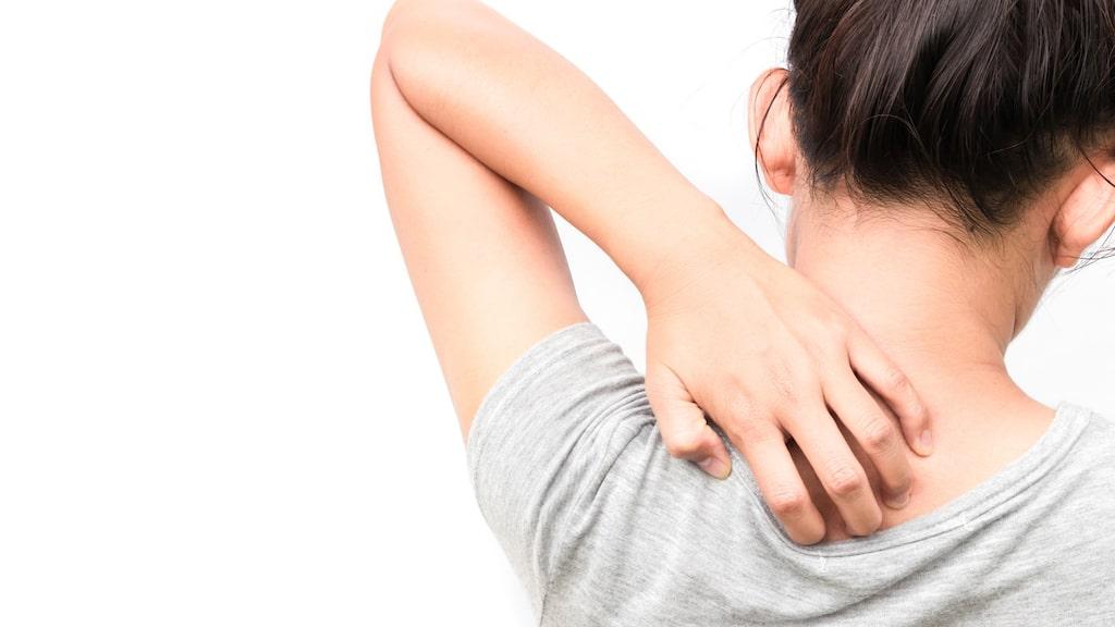 Klådan kan orsakas av allt från stress till underliggande sjukdomar.