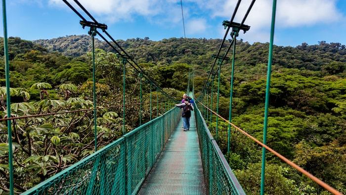Monteverde molnskogsreservat på Costa Rica.