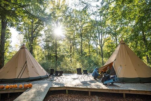 Camp Oak på ligger vackert under lövträden på Skånes Djurpark.