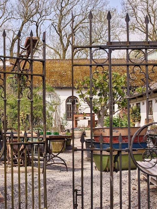 Karl Fredrik och Petter älskar Frankrike och har tagit med sig den sydländska känslan hem till gården Eklaholm i Skåne.