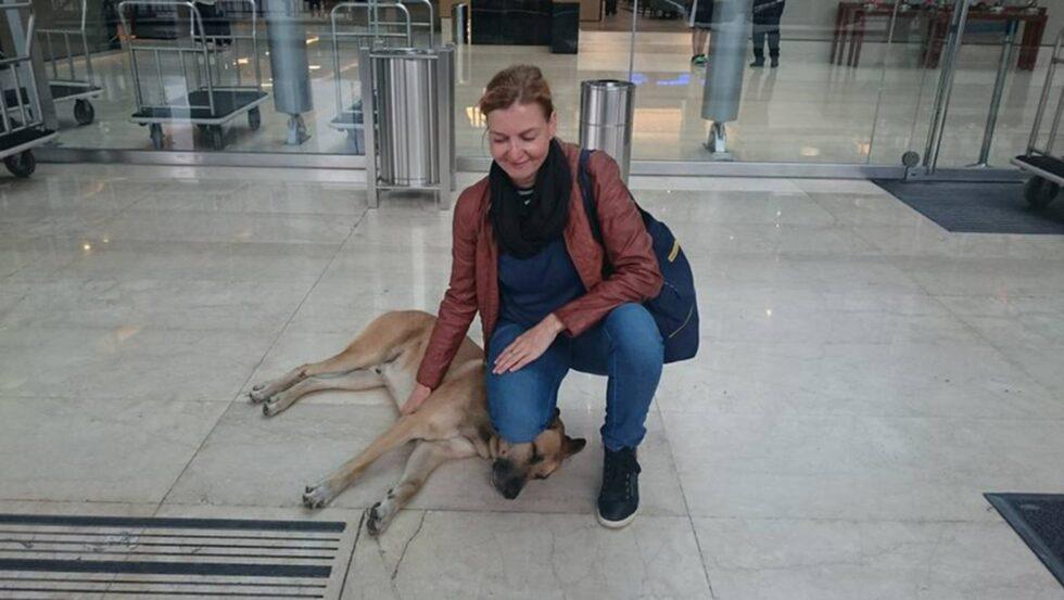 Tyska flygvärdinnan Olivia Sievers stötte på den hemlösa hunden i Buenos Aires för åtta månader sedan.