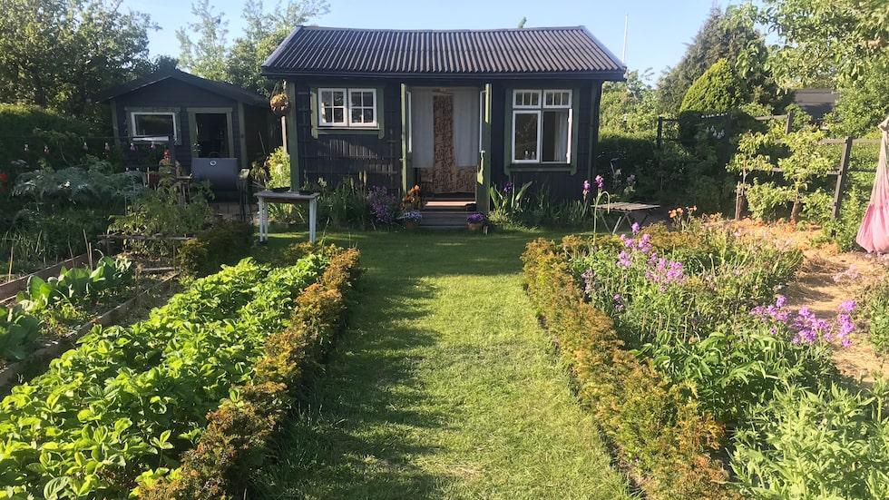 """Så ofta John Taylor och hustrun Torun kan, bor de i kolonistugan under sommarmånaderna. """"Det är ett litet trädgårdsparadis, där alla påtar i jorden."""""""