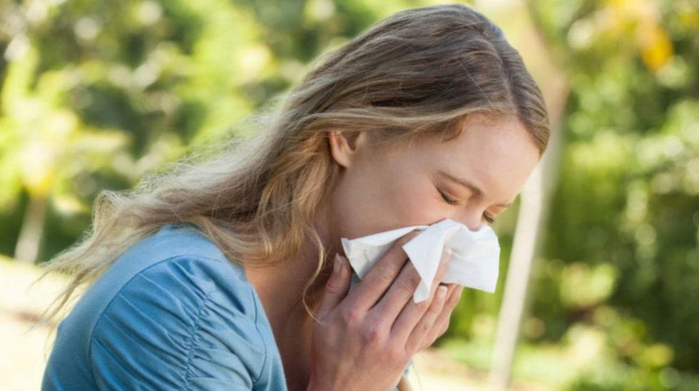 Pollenallergi - här är symptomen som du ska ha koll på. En vanlig förkylning går oftast över inom en vecka, men allergin håller i sig.