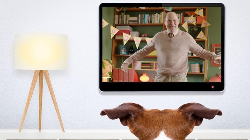 Vad ser hundar när de tittar på tv? Och vad gillar de?