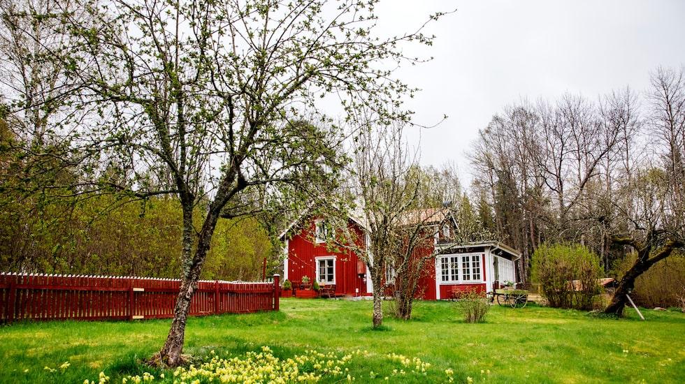 Linnea vet inte när stugan utanför Kungsör är byggd, men den nya glasverandan i gammal stil blev klar 2108.