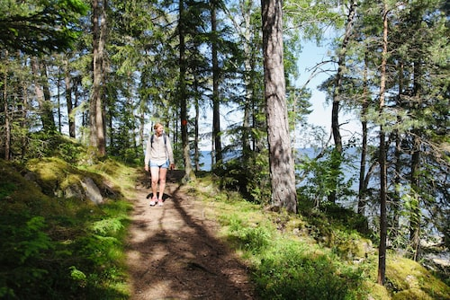 Kinnekulleleden bjuder på variationsrik natur - genom lummiga lövskogar, över blomstrande betesmarker och över vackra klippor.
