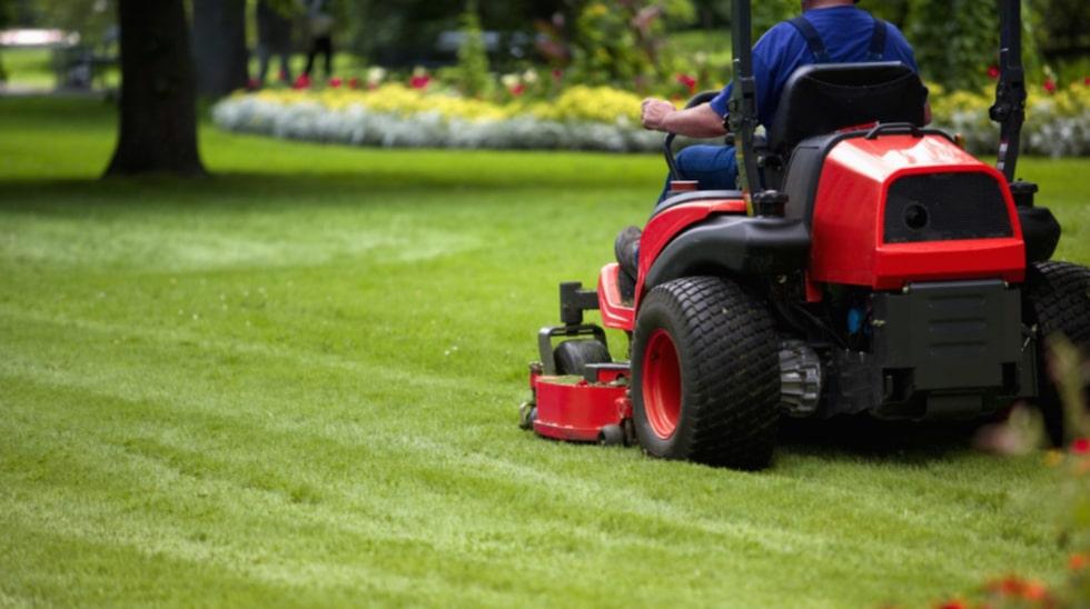 Rut-avdrag ges för enklare återkommande trädgårdsarbete. Dit räknas sådant som gräsklippning, vattning, klippning av häck och omgrävning av kompost. För plantering, trädfällning, trädbeskärning, plattsättning, alltså sysslor som är mer av engångskaraktär får man inte avdrag.