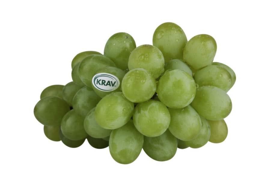 7 VINDRUVOR.Ännu     en frukt som är hårt   besprutad. I  ett  EU-stickprov i ett paket     vindruvor hittades rester  av  så många   som 26 olika kemiska     bekämpningsmedel.