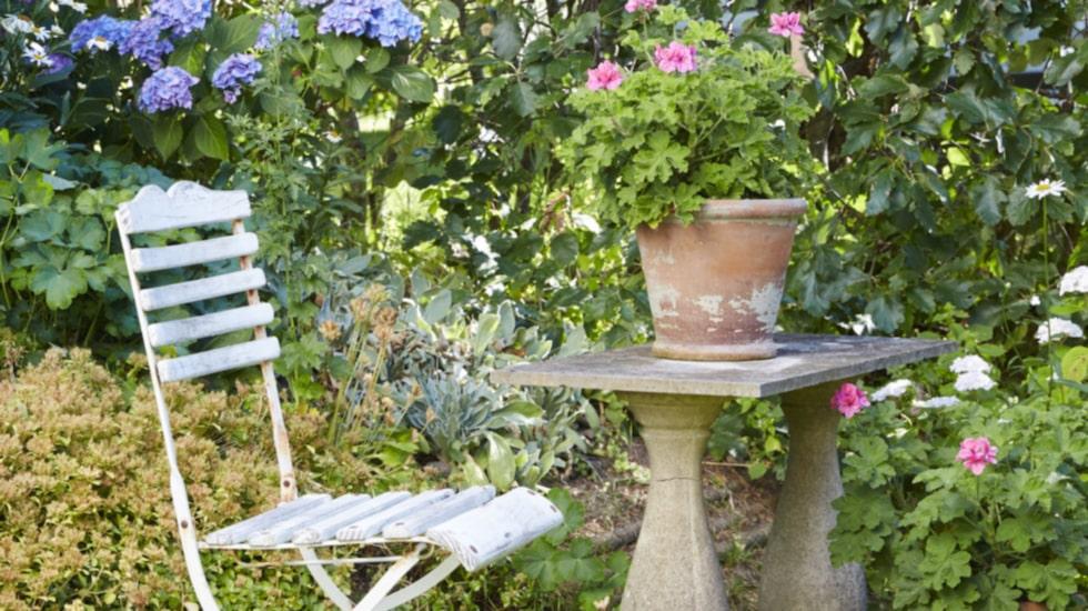 Gamla trädgårdar har många skatter. Här ett vackert stenbord med patina. I terrakottakrukorna växer geranium.