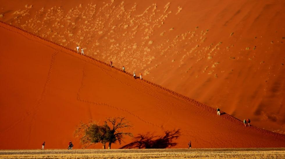 De berömda, röda sanddynerna i Sossusvlei.