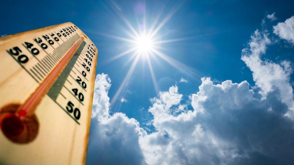 För hög temperatur inomhus i lägenheten ger dig rätt att klaga och få sänkt hyra.