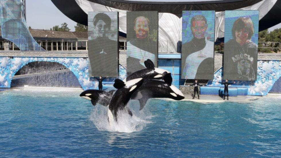 <p>Nu har Sea World lovat att den här generationen späckhuggare blir den sista i parken.</p>