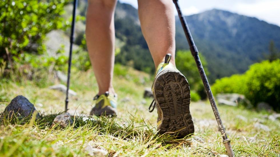 Promenadskor som passar skog och mark kan även kallas trekking eller hikingskor.