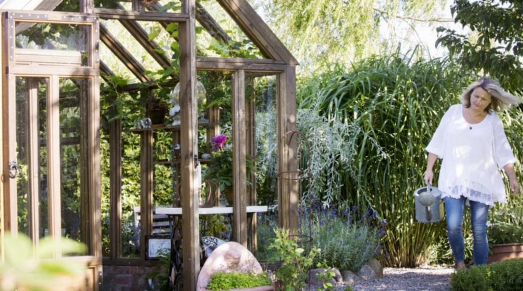<p>I växthuset är det skuggigt och skönt. Till höger syns det höga elefantgräset som har ett vackert ljud när det fläktar.</p>