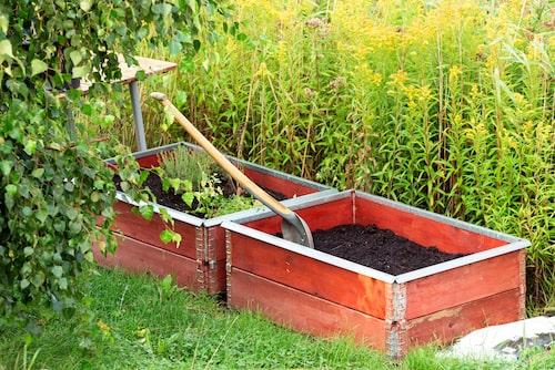 Det är praktiskt med en odlingslåda – du kan odla i princip vad som helst i den. Sallad, jordgubbar, potatis, blommor, kryddor och buskar – det mesta fungerar.