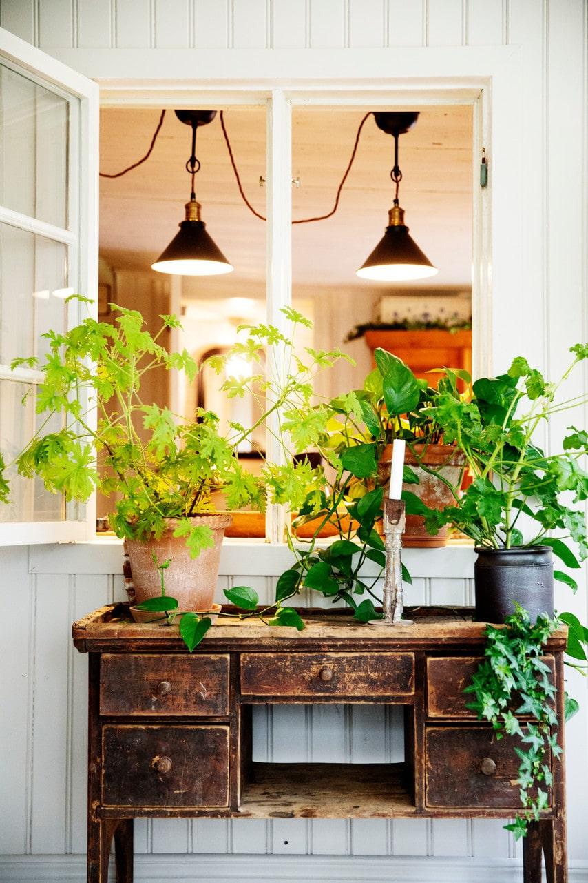 Fönstret in till köket blir ett fint blickfång på den nybyggda glasverandan.