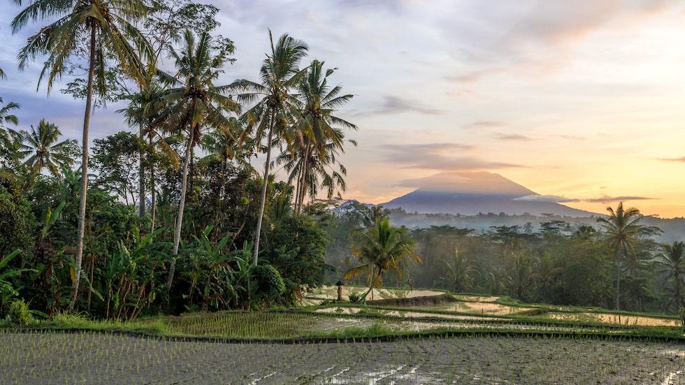Gunung Agung, Balis heligaste berg.