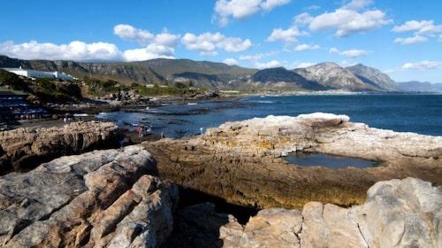 Walker Bay sägs vara bästa platsen i världen om man vill se valar - från land.