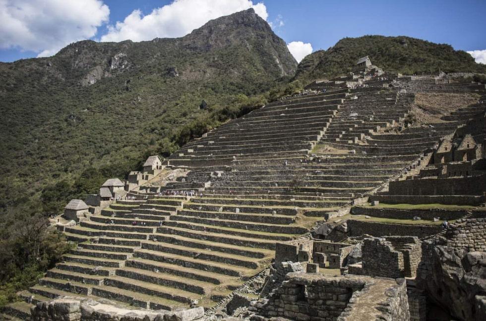 Terrasser längs sluttningarna på Machu Picchu.