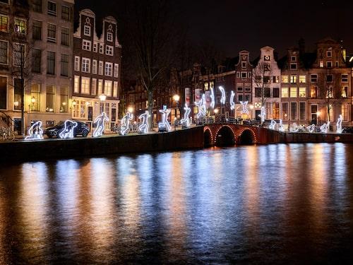 Amsterdam har ett nöjesutbud och nattliv som anstår en världsstad.