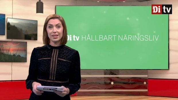 Di TV Hållbart näringsliv 16 december - om affärsklimatet efter corona