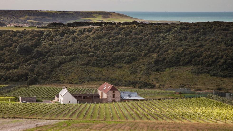 Vädret i Södra England kan vara problematiskt men lämpar sig väldigt väl för just mousserande vin