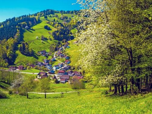 Schwarzwald är Tysklands vackraste region.