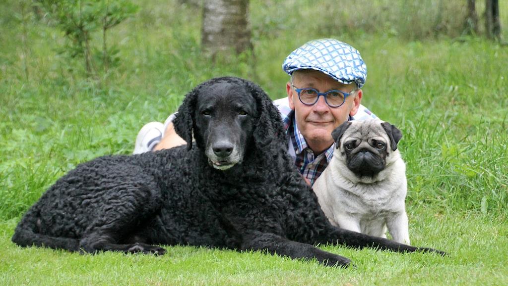 Hans Rosenberg på Svenska Kennelklubben tror att småhundar blir mer populära för att de passar in i vårt vardagsliv.