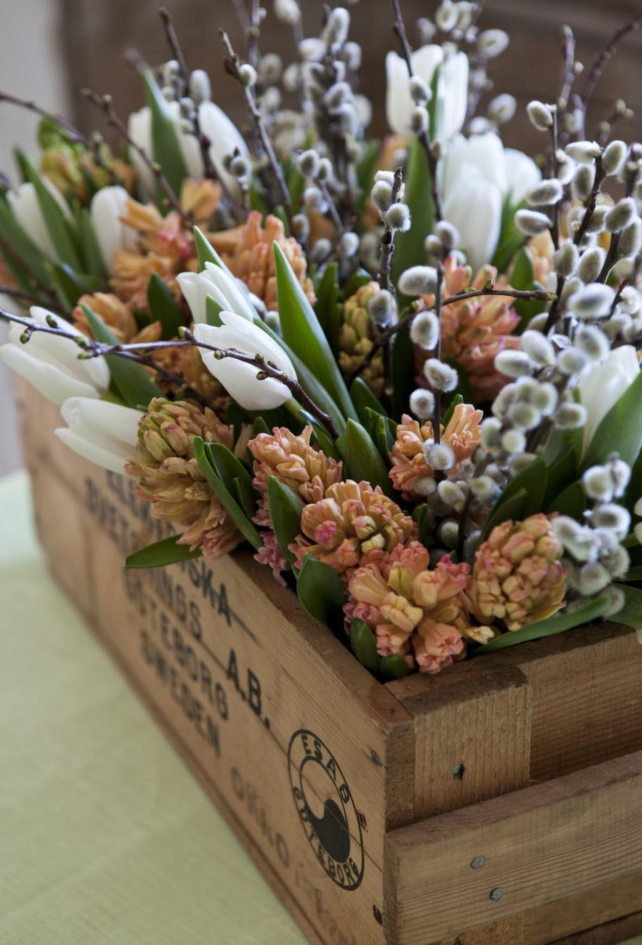 Hyacinter, tulpaner och videkissar i en gammal trälåda - sätt dem i glasburkar med vatten inuti lådan.
