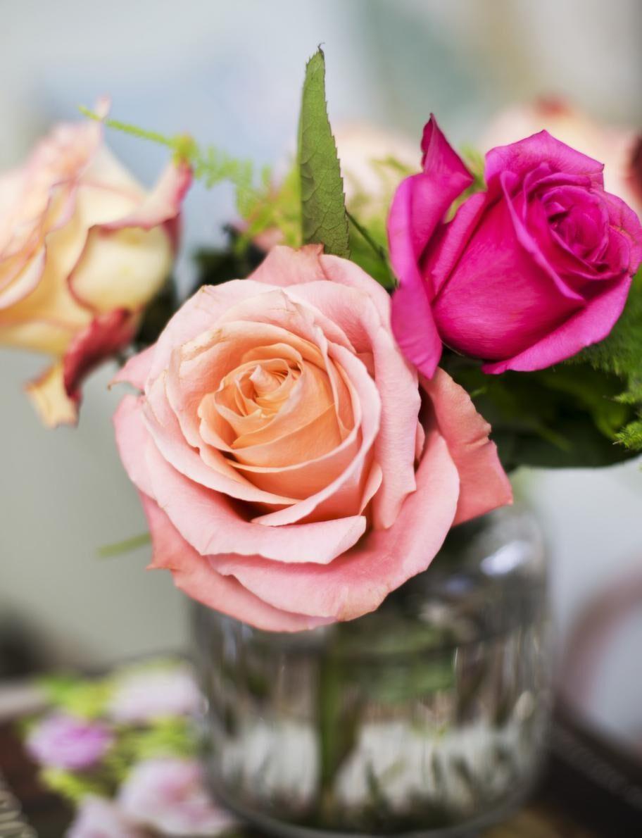 Romantiskt måste. Glasvas med lock, 165 kronor, stora, doftande rosor, allt från Floristkompaniet.